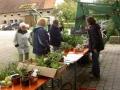 Pfanzentausch 2006 (1)